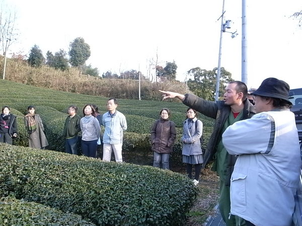 第一回 茶の苗木を植える会